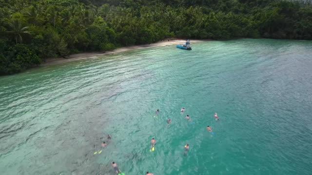 Aerial - Snorkelers in Fiji video