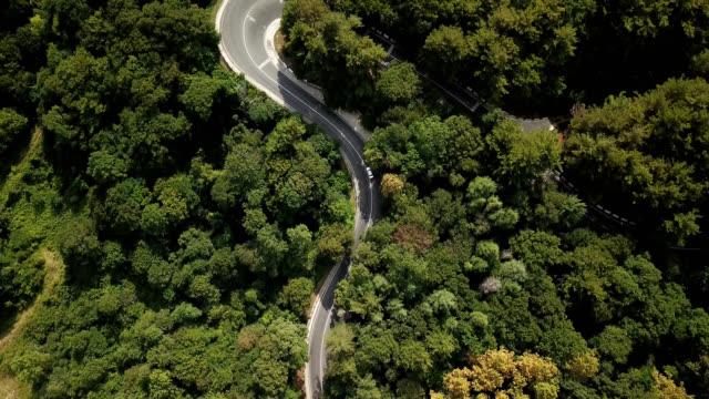 曲がりくねった山に沿って自動車輸送の 4 k 空中映像素材集は通過ソチは、ロシアの森林道 - 曲線点の映像素材/bロール