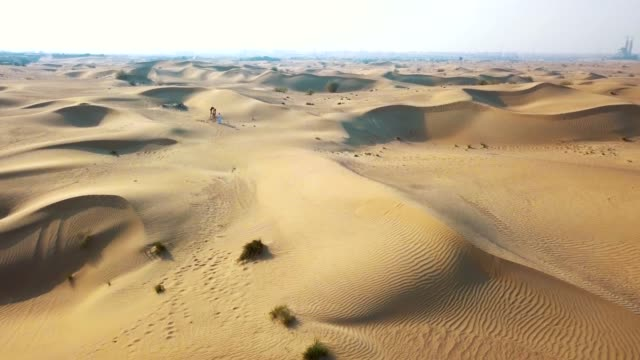 aerial survey drone flies over the desert, the bedouin with a camel goes through the desert - arabia saudita video stock e b–roll