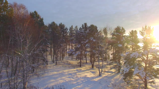 Aerial survey from the air. Winter. Sunset on the Angara River Aerial survey from the air. Winter. Sunset on the Angara River. siberia stock videos & royalty-free footage