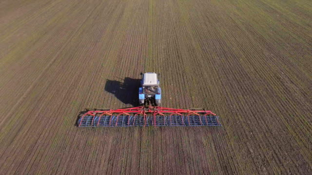 Aerial survey of the tractor, which cultivates the field of winter wheat. Against the background of the ground with newly sprouted sprouts video