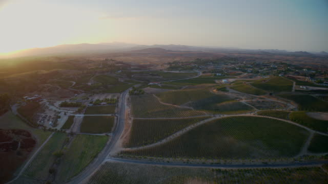 Aerial time lapse California wine country vineyards video