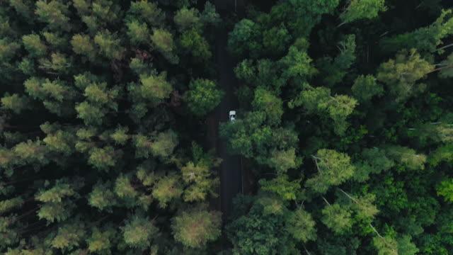 aerial uppifrån 4k vy av vit bil körning - summer sweden bildbanksvideor och videomaterial från bakom kulisserna