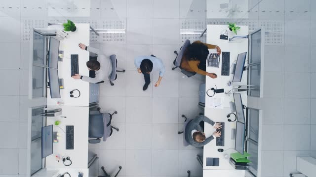 Aerial Top Down Drone Shot of Big Busy Corporate Office with Two Rows off Businessmen and Businesswomen Working on Desktop Computers. Bright Open Space Office with Businesspeople and Salespeople