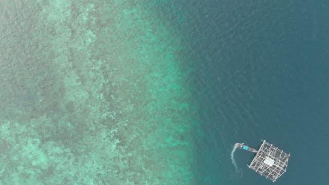 Aerial: top down over coral reef uncontaminated coastline tropical caribbean sea