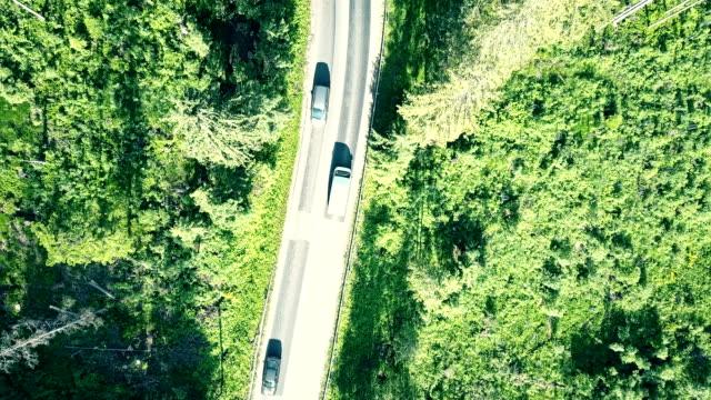 hava yukarıdan aşağıya bir köknar ağacı orman ve avrupa kırsal otomobil yol görünümünü - zakopane stok videoları ve detay görüntü çekimi