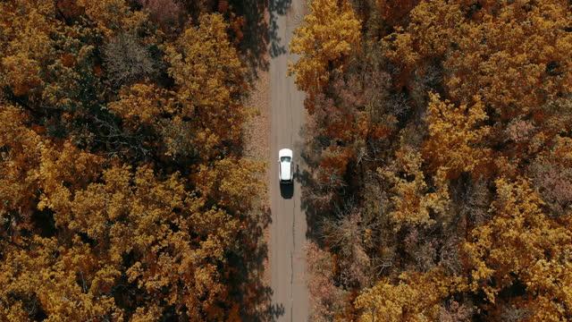vidéos et rushes de vue aérienne vers le bas de voiture blanche conduisant sur la route de campagne dans la forêt dans. - haut