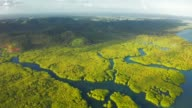 istock Aerial Top View of Amazon rainforest and river in Brazil 1160065647