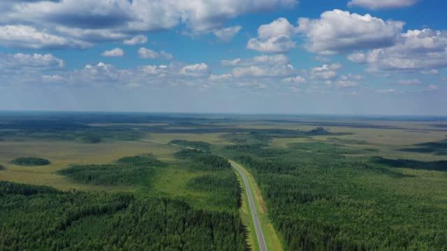 vídeos de stock e filmes b-roll de aerial top view of country road in forest - linha do horizonte sobre terra