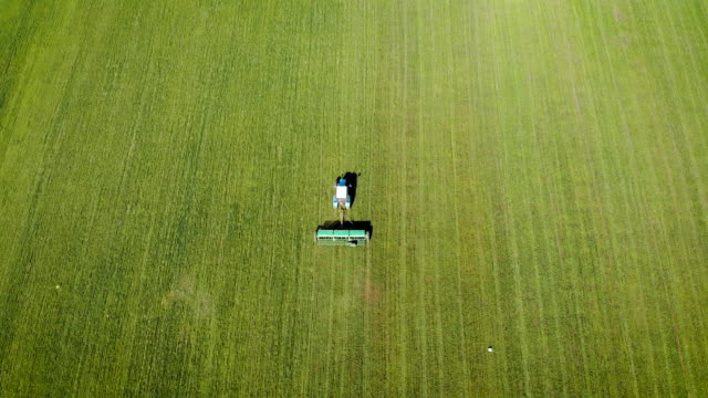 Aerial top view of farming tractor scatters solid herbicides and pesticides on field Aerial top view of farming tractor scatters solid herbicides and pesticides on field. Spring agronomic activity on agricultural land monoculture stock videos & royalty-free footage
