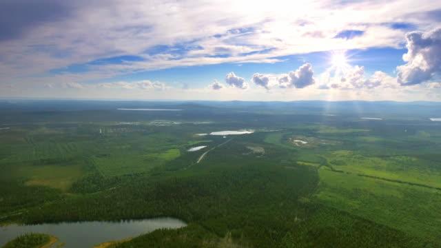 vídeos de stock, filmes e b-roll de top vista aérea da floresta e grama - rússia