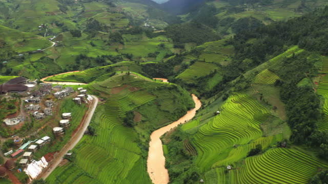Aerial top view of fresh paddy rice terraces, green agricultural fields in countryside or rural area of Mu Cang Chai, mountain hills valley at sunset in Asia, Vietnam. Nature landscape background. Aerial top view of fresh paddy rice terraces, green agricultural fields in countryside or rural area of Mu Cang Chai, mountain hills valley at sunset in Asia, Vietnam. Nature landscape background. sa pa stock videos & royalty-free footage