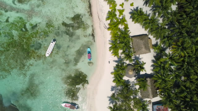 Aerial top view of Punta Cana beach, Dominican Republic. Summer holiday concept. video