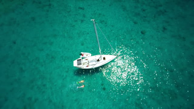 aerial video of honeymoon couple holding hands and snorkeling video