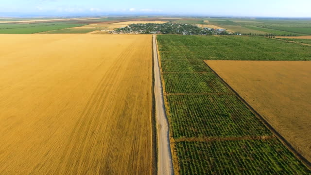 Aerial Video Of Multicolored Fields With Various Types Of