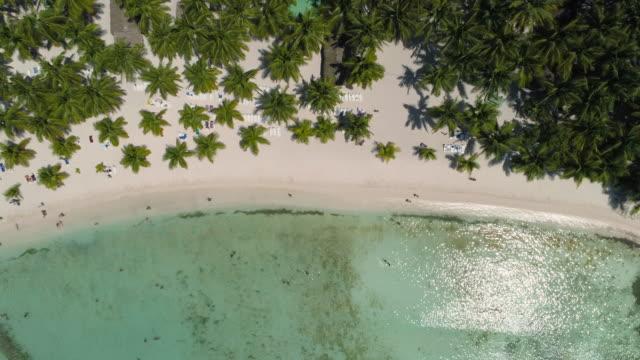 Aerial video of Paradise tropical island beach. Beachfront Punta Cana, Dominican Republic video