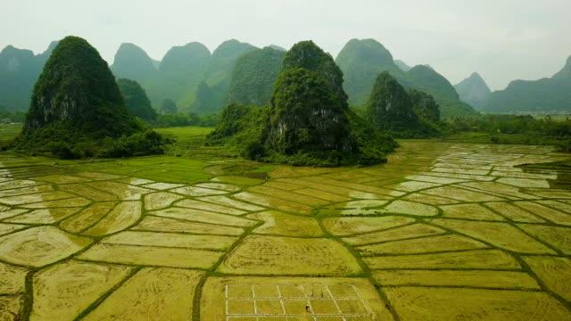 aerial video reisfelder der karstberge von guilin, china - china stock-videos und b-roll-filmmaterial