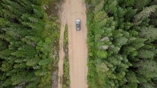 4K Aerial Video View of a Road in the Forest video
