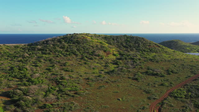 Aerial view above scenery of Curacao, Caribbean with ocean, coast, hills, lake Aerial over Curacao /Caribbean /Netherland Antilles curaçao stock videos & royalty-free footage
