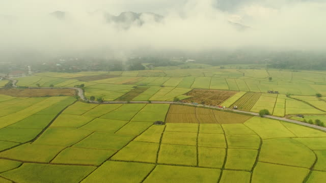 Aerial view agriculture in northern Thailand. Aerial view amazing landscape.