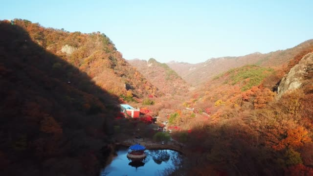 Aerial view autumn forest of Naejangsan National Park,South Korea. video