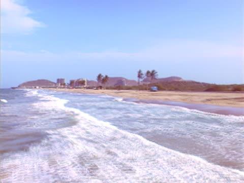 vidéos et rushes de vue aérienne de la plage avec palmtree#4 ntsc - angiosperme