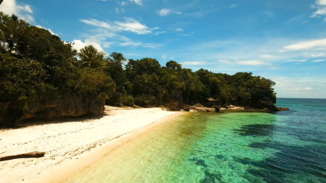 Aerial view beautiful beach on a tropical island. Philippines, Anda area video