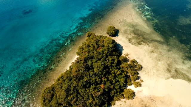 Aerial view beautiful tropical island. Philippines video