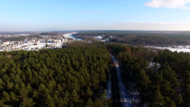 Aerial View. Beautiful winter forest in sunny day. Road between the trees. video