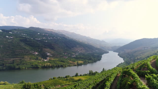 vídeos de stock e filmes b-roll de aerial view bend of douro river in mountains - douro