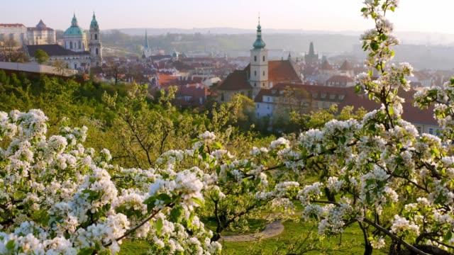 プラハの上に咲く庭園の空中写真 - チェコ共和国点の映像素材/bロール