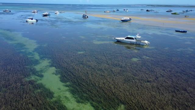 stockvideo's en b-roll-footage met 4k: luchtfoto door drone beelden mertasari strand in sanur.some, traditionele vissersboten (jukung) worden geparkeerd in het ondiepe water. - gulf coast states