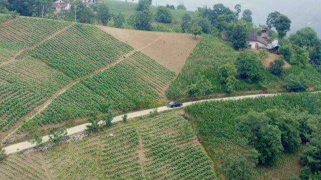 山道を走行する空中写真車 - 陸の乗り物点の映像素材/bロール
