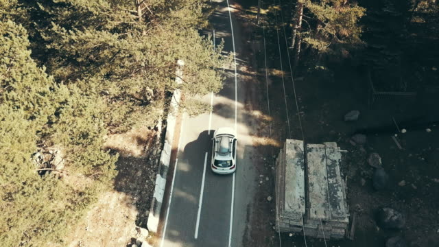 Aerial view car moving along highway among forests. Family trip by car video