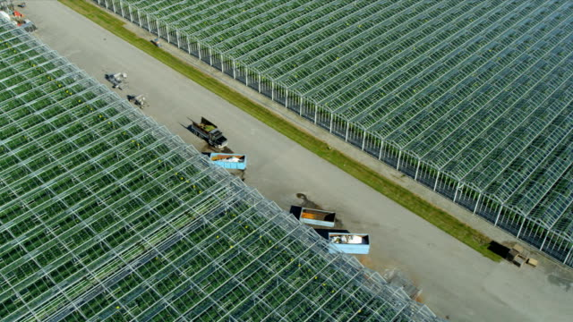 Aerial view commercial greenhouses, Vancouver video