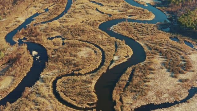 erken i̇lkbahar manzara hava görünümü kavisli nehir. nehir kıvrımları ve kuru çim manzara. yüksek tutum dan güzel avrupa doğanın üst görünümü. drone görünümü. kuş bakışı - full hd format stok videoları ve detay görüntü çekimi
