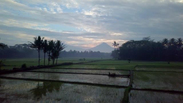 vidéos et rushes de tir de drone vue aérienne de la ville de borobudur à java au lever, champs de riz en indonésie voyage religion drone concept 4k résolution et volcan - indonésie