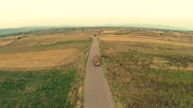 Aerial view : farmer tractor firewood video