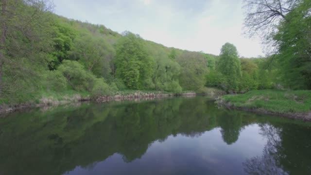 flygvy-flygande längs en flod i natur parken/4k - maj bildbanksvideor och videomaterial från bakom kulisserna