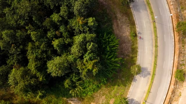 aerial view flying over jungle with road while biker speed in bicycle race. - motociclista video stock e b–roll