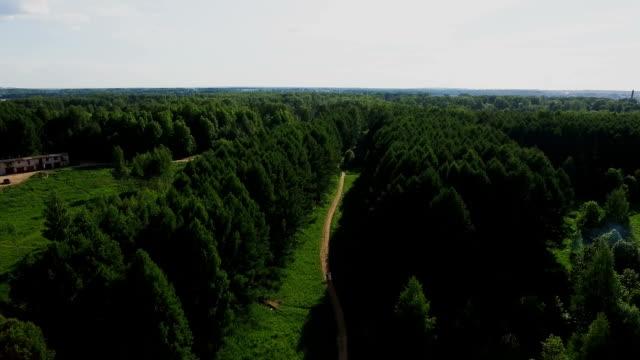 stockvideo's en b-roll-footage met luchtfoto. vliegen boven de bomen prachtige bos. luchtfoto camera geschoten. landschap panorama - s