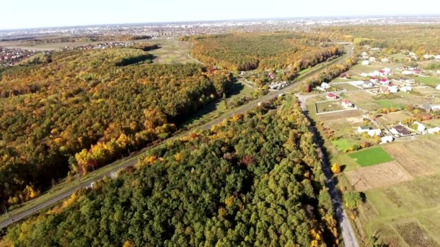 Aerial View. Flying over the road, field and beautiful autumn trees. - vídeo