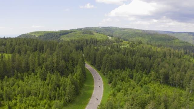 luftaufnahme über zweispurige forststraße mit auto bewegt grüne bäume von wäldern wachsen beidseitig. auto fährt entlang der forststraße. antenne: auto fährt durch pinienwald. deutschland schwarzwaldantenne - kieferngewächse stock-videos und b-roll-filmmaterial