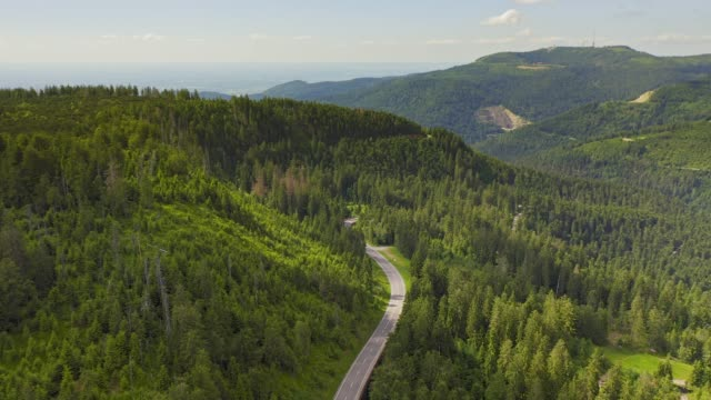 aerial view flying over two lane forest road with car moving green trees of woods growing both sides. car driving along forest road. aerial:car driving through pine forest.germany black forest aerial - pezze di stoffa video stock e b–roll