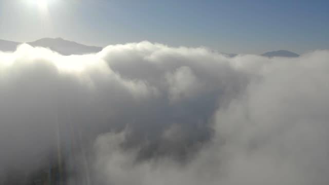 鳥圖在雲層中飛行 - 航拍 個影片檔及 b 捲影像