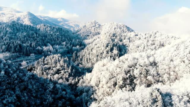 vídeos de stock e filmes b-roll de aerial view forest in the cold winter - noruega