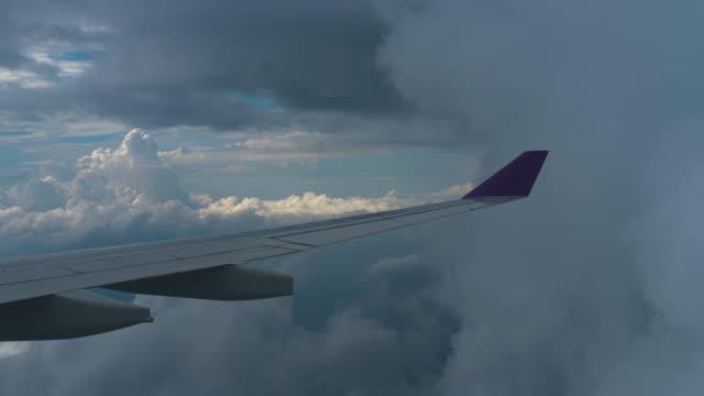 降下する飛行機からの空中写真 ビデオ