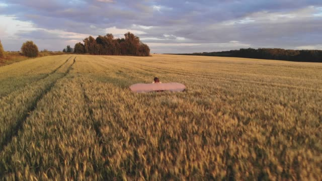 Aerial view. Girl runs across the summer field with open wings video