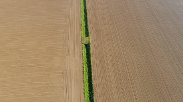 日当たりの良い、農村耕した畑、もし、スロベニアの中で ws 空中ビュー緑灌漑溝 - 対称点の映像素材/bロール