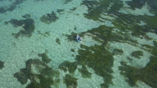 vídeos de stock e filmes b-roll de aerial view if fishing boat in the sea - fishman